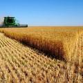 Сколько потеряют аграрии РК на спецпошлинах?