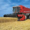 Казахстан имеет шансы увеличить экспорт зерна