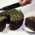 Повышение налога повысит эффективность использования земель