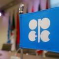 ОПЕК: Нужно нарастить инвестиции внефтяную отрасль
