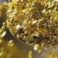 В Polymetal пока не подтверждают покупку золотого рудника Бакырчик