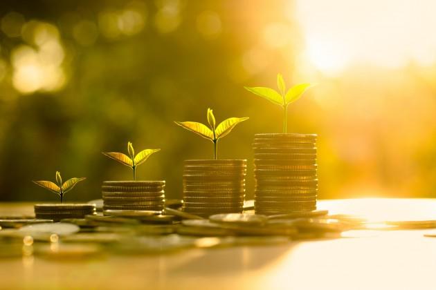 Средствами ЕНПФ профинансируют три крупных сегмента сельского хозяйства