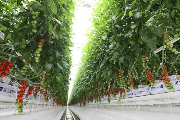 В Актюбинской области иностранные инвестиции приносят плоды