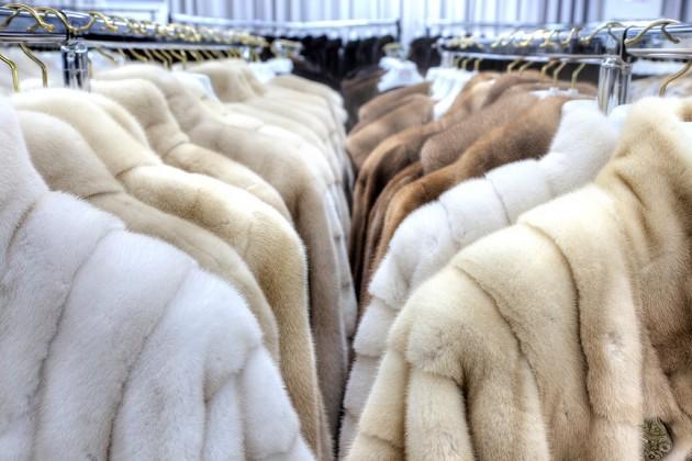 Маркировка меховых изделий принесет вбюджет 600млн тенге