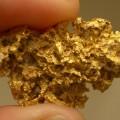 Залежи золота имеди обнаружили вКарагандинской области