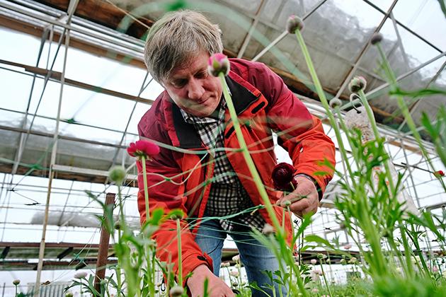 О садовнике Дмитрии Парфенове и его миллионном заработке