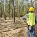 Услуги eGov для природных ресурсов иэкологии