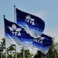 IATA снизила прогноз прибыли авиакомпаний на12%