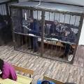 Вынесен приговор экс-начальнику финпола Алматы Амирхану Аманбаеву