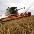 Казахстанским аграриям осталось убрать 0,9% площадей