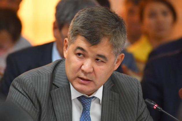 Елжан Биртанов: Стимулируя частный сектор, мы ослабили контроль