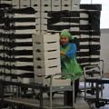 В Казахстан приедут крупные зарубежные закупщики