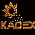 Оптическую продукцию, сделанную в Казахстане, представят на KADEX-2016