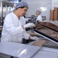 В Шымкенте открылась новая фабрика «Рахат»