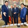 В Северном Казахстане урожайность превысила 17 центнера с гектара