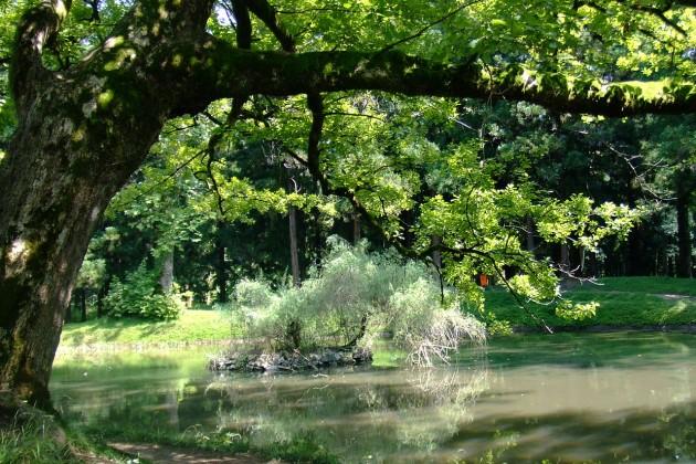 В Астане появится ботанический сад