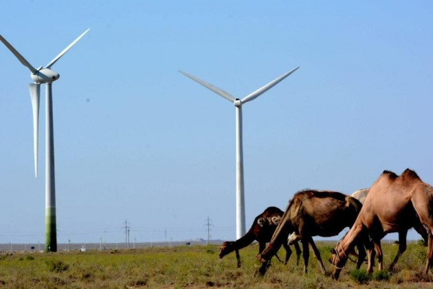 В Мангистауской области – серьезные планы по развитию зеленой энергетики