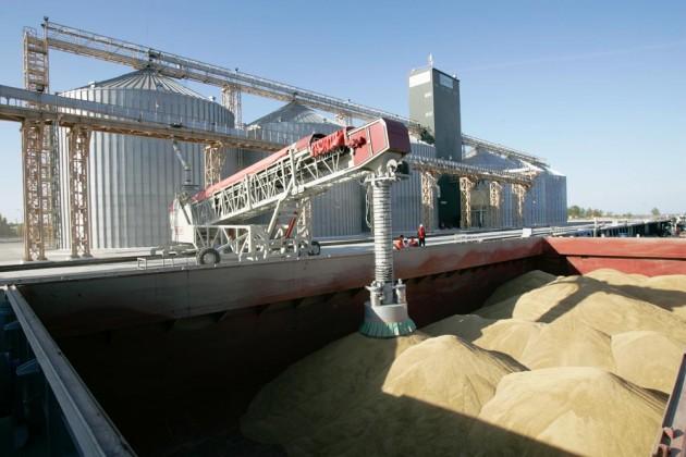 Премьер недоволен преобладанием пшеницы на полях