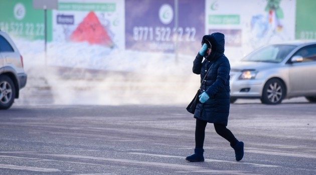 Премьер попросил незадерживать сотрудников допоздна впериод морозов