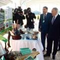 Президент РК: Сельское хозяйство – приоритетная отрасль