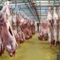 Свыше 3 тыс. тонн мяса экспортировал РК в 2013 году