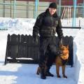 Служебные собаки военной полиции поедут на конкурс