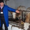 Для молочных ферм семейного типа увеличена сумма займа
