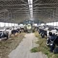 Нурлан Ногаев рассказал, как увеличить экспорт мяса