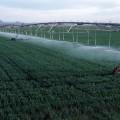 Повысить тариф на поливную воду