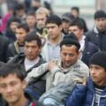 Государству выгодна легализация мигрантов