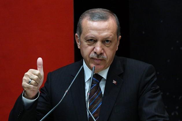 Реджеп Эрдоган объявил опроведении досрочных выборов вТурции
