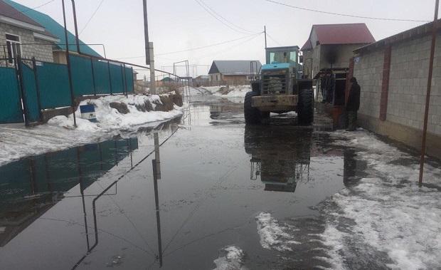 Наборьбу спаводком вАлматинской области выделили более миллиарда тенге