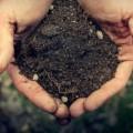 Для фермеров налог на землю вырастет в 1,5 раза