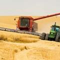 Венгрия инвестирует в сельское хозяйство Казахстана