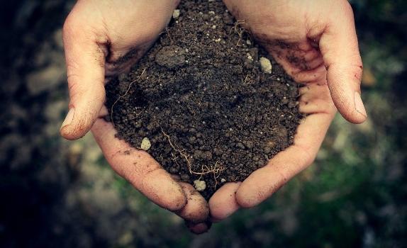 В Караганде выросло предложение по участкам земли
