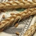 Продкорпорация продает зерно в режиме ДВАА