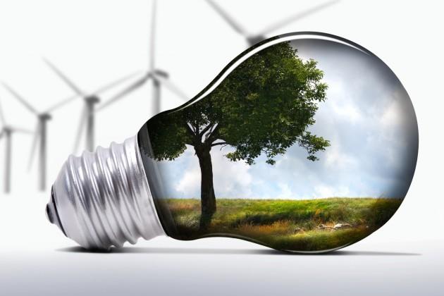 Для развития зеленой экономики нужна политическая поддержка
