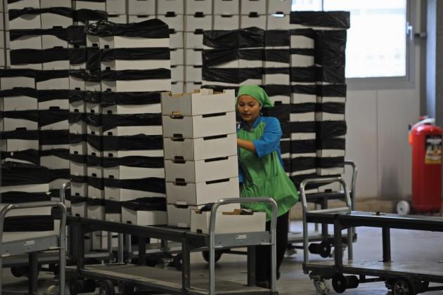 В Ташкент поедут представители 23 компаний Казахстана