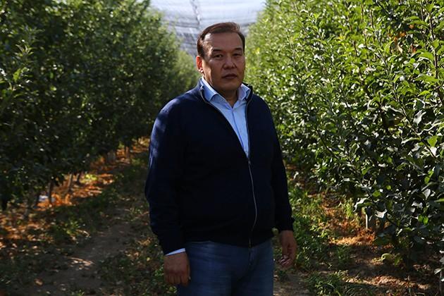 Яблочный бизнес: Как реализовать передовой проект