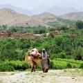 Евросоюз будет ежегодно выделять Афганистану 1,2 млрд евро