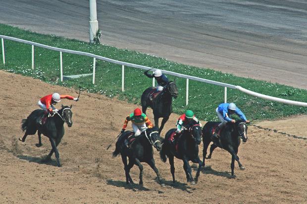 Казахстан получит статус страны, свободной от болезни лошадей