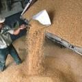 Северу РК нужны новые емкости для хранения зерна