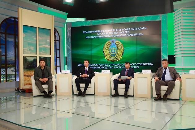 Казахстан поставил рекорд по экспорту говядины