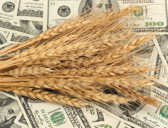 В декабре на ЕТС оборот по зерновым превысил 20 млрд тенге