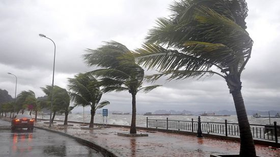 ВГонконге более 200человек пострадали оттайфуна «Мангхут»