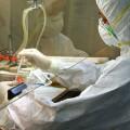 Птичий грипп H7N9 угрожает перерасти в пандемию