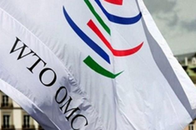 РК в течение полугода завершит переговоры о вступлении в ВТО