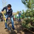 Бауыржан Байбек взялся за озеленение города