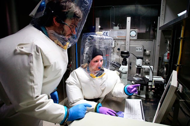 Эбола добралась до Великобритании