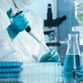 Впробах сокрестностей Байконура чуму необнаружили